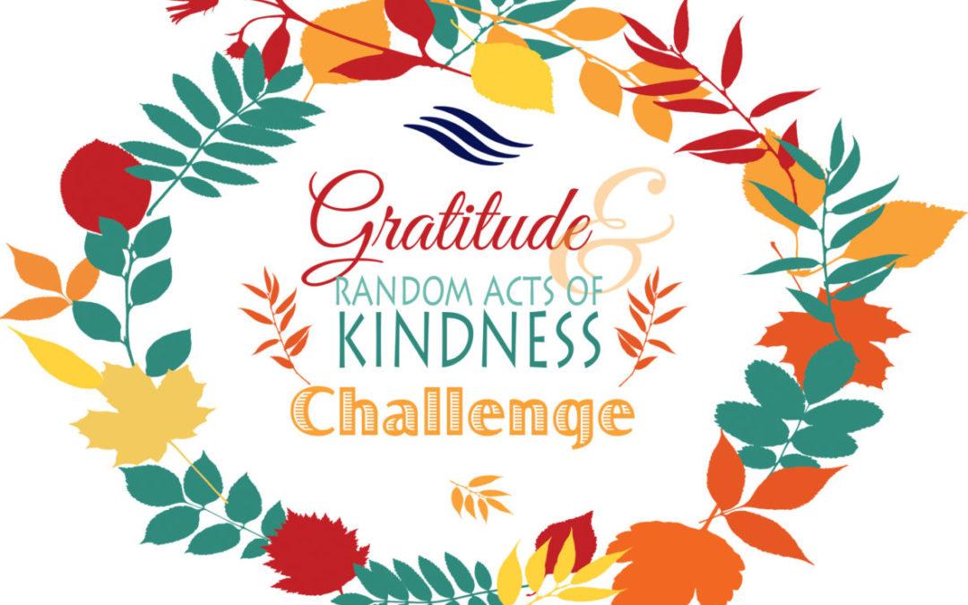 Q4 Wellness Challenge: Cultivating Kindness & Gratitude